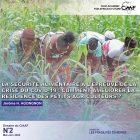 La sécurité alimentaire à l'épreuve de la crise de Covid-19 : comment améliorer la résilience des petits agriculteurs ?