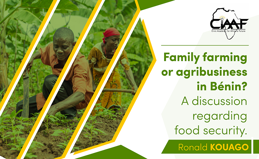 Research Paper N°1 : Family farming or agribusiness in Benin ? a discussion regarding food security